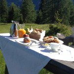 Nie ma to jak świeże i zdrowe śniadanie na świeżym powietrzu.